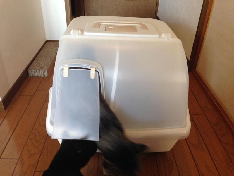 我が家の猫トイレ